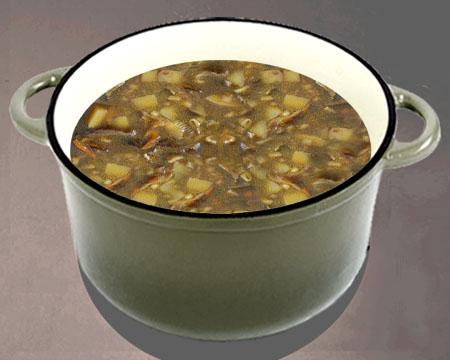суп с перловкой и сушеными грибами рецепт с фото пошагово